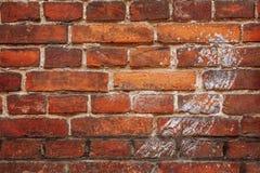 Wand hergestellt vom alten Ziegelstein, der eine Spur der Farbe ist Lizenzfreies Stockbild