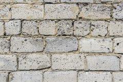 Wand hergestellt von den Betonblöcken Stockfotos