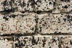Wand hergestellt von den Betonblöcken, beflecktes schwarzes Harz Stockbilder