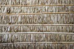 Wand hergestellt von den Nipapalmblättern, -beschaffenheit und -hintergrund Lizenzfreie Stockbilder