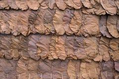 Wand hergestellt von den trockenen Blättern Stockbild
