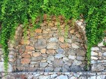 Wand mit Blättern Lizenzfreies Stockfoto