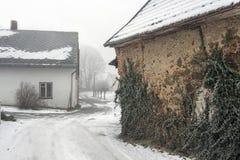 Wand mit Efeu in einem Winterdorf Stockbild