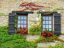Wand mit Fenstern und Blumen Lizenzfreies Stockbild