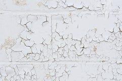 Wand mit Schalenlack Stockbilder