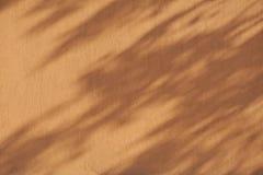 Wand mit Schatten von den Blättern des Baums Lizenzfreie Stockfotos