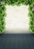 Wand pflanzt Rahmenhintergrund lizenzfreie stockfotos