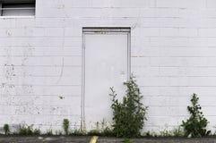 Wand, Tür, Unkräuter Lizenzfreies Stockfoto