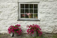 Fenster des Hauses Stockbild