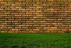 Wand und Gras Stockbild