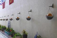 Wand verziert mit Körben mit Kürbisen auf Halloween Lizenzfreie Stockfotos