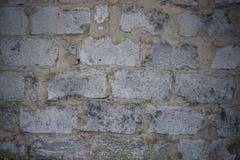 Wand von den Blöcken der grauen Farbe Stockfotos