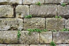 Wand von Steinen Lizenzfreie Stockbilder