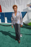 Wanda Sykes Royalty Free Stock Photography