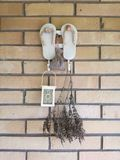 Wanddekorationszapfen-Pantoffelhintergrund stockbild