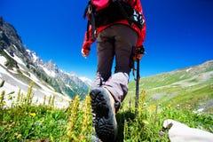 Wandelaar stock foto