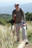 Wandelaar in bergen stock afbeelding