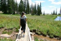 Wandelaar in de bergen dichtbij een meer stock fotografie
