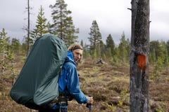 Wandelaar in de wildernis van Noorwegen Stock Fotografie