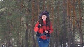 Wandelaar in de winter boshd stock videobeelden