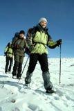 Wandelaar in de winterbergen Stock Afbeeldingen
