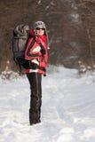 Wandelaar in de winterbos Stock Foto