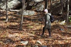 Wandelaar die in de herfstbos lopen in de bergen Wandeling en het reizen Royalty-vrije Stock Afbeelding
