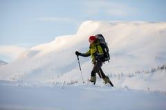 Wandelaar die in de winter Karpatische bergen lopen stock afbeelding