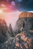 Wandelaar die zich boven de bergcanion bevinden Instagramstylization Royalty-vrije Stock Foto's