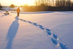 Wandelaar in een de winterbos Royalty-vrije Stock Foto's