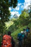Wandelaar met rugzak die zich bovenop een berg bevinden Stock Afbeelding
