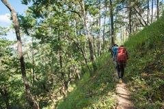 Wandelaar met rugzak die zich bovenop een berg bevinden Royalty-vrije Stock Afbeelding