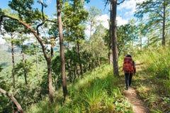 Wandelaar met rugzak die zich bovenop een berg bevinden Stock Fotografie