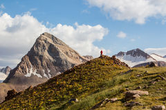Wandelaar met rugzak die zich bovenop een berg en het genieten bevinden van kazachstan Royalty-vrije Stock Afbeelding