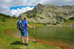 Wandelaar in nationaal park Royalty-vrije Stock Foto