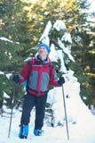Wandelaar onder sneeuw behandelde pijnboombomen Stock Foto's