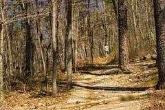 Wandelaar op Buck Mountain Trail stock foto's