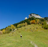 Wandelaar op de bergen stock foto's