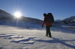 Wandelaar op de sneeuw Stock Foto