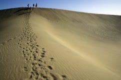 Wandelaar op een zandduin Stock Foto's