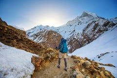 Wandelaar op trek in Himalayagebergte, Annapurna-vallei royalty-vrije stock afbeeldingen