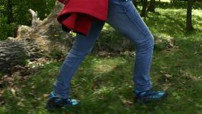 Wandelaarlaarzen die op bosrand lopen die over gevallen boom springen stock videobeelden