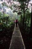 Wandelaars bij het hangen van brug