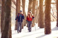 Wandelaars in bos op de winter Stock Foto