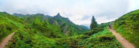 Wandelaars die Ciucas peack op de zomer gaan opzetten royalty-vrije stock foto