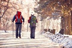 Wandelaars die in de winter, achtermening wandelen Royalty-vrije Stock Foto