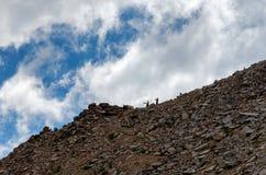 Wandelaars die mening over Kearsarge-Pas, Sequoia/van de Koningencanion Nationaal Park bewonderen stock foto's