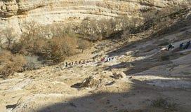 Wandelaars die op de Canionmuren beklimmen van Nahal Zin in Negev royalty-vrije stock fotografie