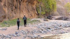 Wandelaars die in Zion National Park Utah wandelen stock videobeelden