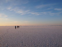 Wandelaars op een overzees ijs Royalty-vrije Stock Foto's